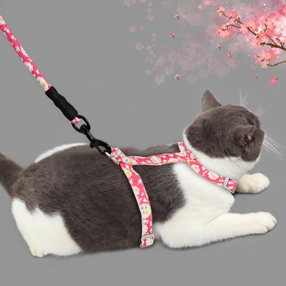 Rojo Grneric Arn/és y Correa para Gato Collar Ajustable Antiescape Correas de Entrenamiento para Mascotas Peque/ño y Gatito Caminata al Aire Libre