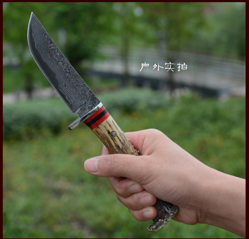 Buy 2016 High quality Damascus Steel Hunting Knife Antler handle Damascus collection knife Outdoor survival tactical knife best gift cheap