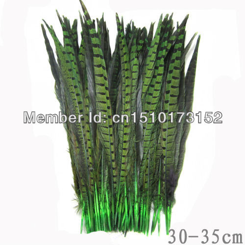 10s Green Dyed Loose pheasant Tail feathers 12-14inches/30-35cm Craft Supplies OH1-9 - TiTi Feather Market store