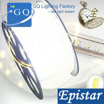 Chinese post 5m/lot 3014 120leds/m white/warm led strip LED string Waterproof 100v110v120vInstead of 5050 5630 led strip(China (Mainland))