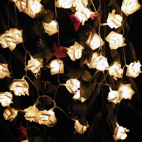 New Arrival 5M 50 Roses LED Garlands Party Lighting Strings Battery Power Energy Saving Decoration Wreaths Lights for Home(China (Mainland))