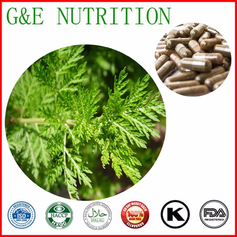 500mg x 1000pcs Artemisia annua/ Sweet Wormwood Herb/ Artemisia apiacea Extract Capsule with free shipping<br><br>Aliexpress