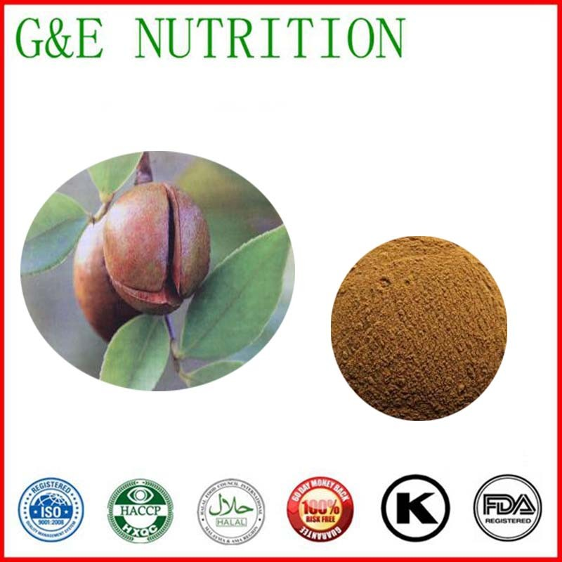 900g High quality Camellia seed/ oiltea camellia seed/ tea seed Extract with free shipping<br><br>Aliexpress