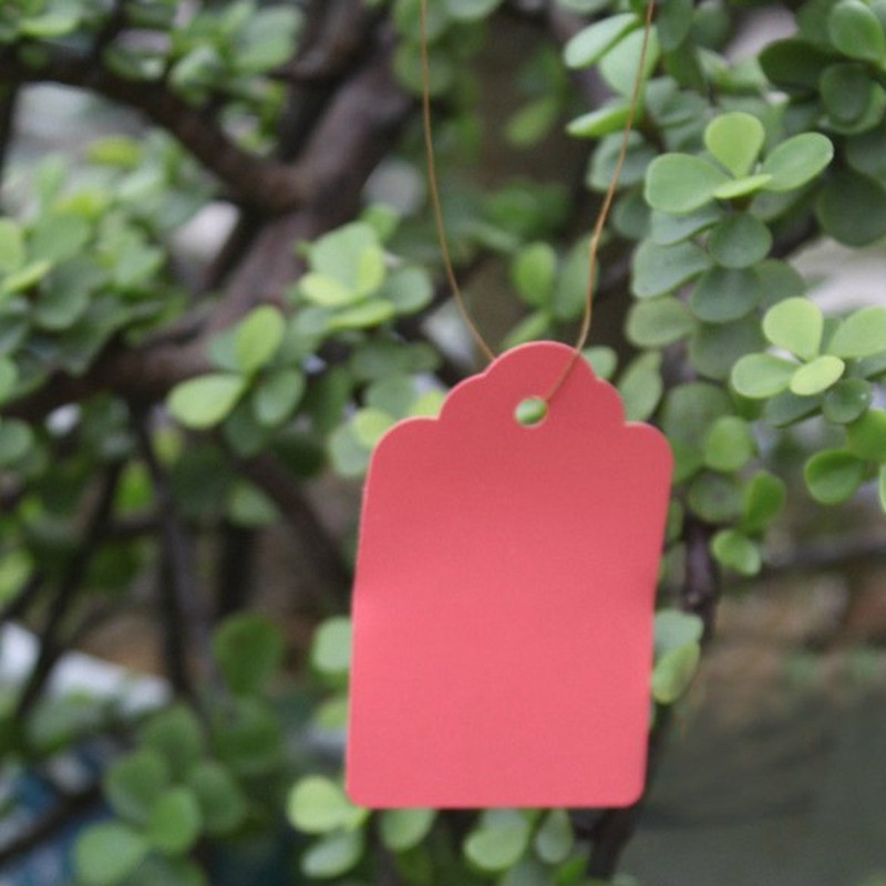 100Pcs/Set Waterproof Pink Plastic Strip Line Garden Labels Signs Plant Hanging Tags Pot Marker Garden Tools