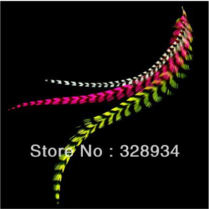 50 sets/lot fashion clip In feather hair extensions Colorful grizzly feather hair extension popular in France Free Shipping(China (Mainland))