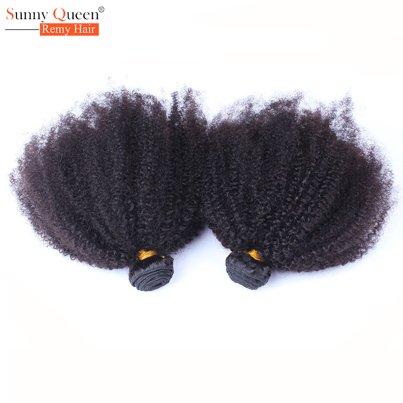 Brazilian Afro Kinky Curly Hair 2Pcs Human Hair Extensions Brazilian Kinky Curly Virgin Hair Rosa Queen Hair Products Human Hair