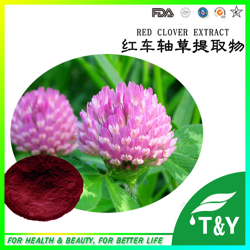 100% Pure Isoflavones Red Clover Powder | red clover extract<br>