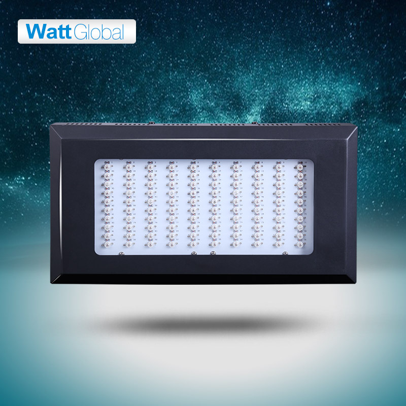 Professional Lighting Led Grow Light 300w Flowering Plant and Hydroponics System Led Lamp for Grow Tent(China (Mainland))