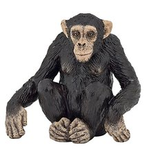Chimpanzee animals Anime models toys hobbies action toy figures anime games birthday gifts