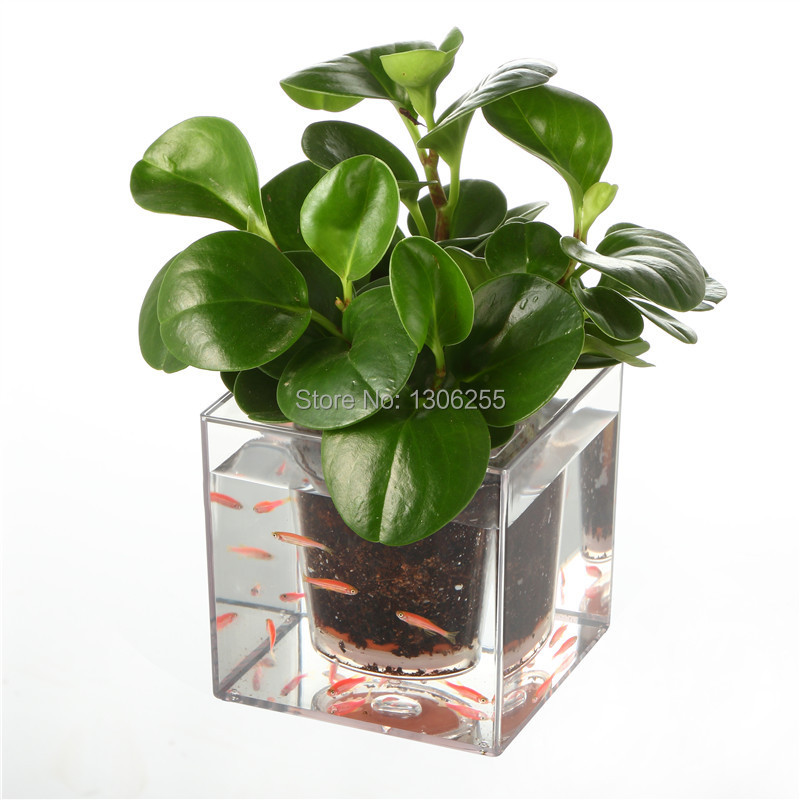 Free Shipping 1pcs Creative Clear Tube Plant Pot / Flower Pot Self-Watering Planter Fish Tank for Home and Office Desk J15028(China (Mainland))