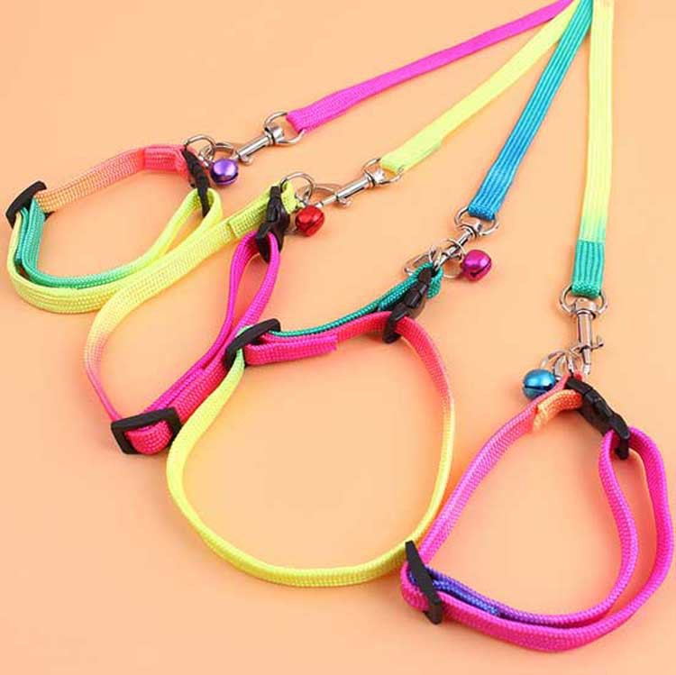Pet products rainbow colour pet neck with small bells Teddy pet traction on the rope Collar traction rope dog free shipping(China (Mainland))