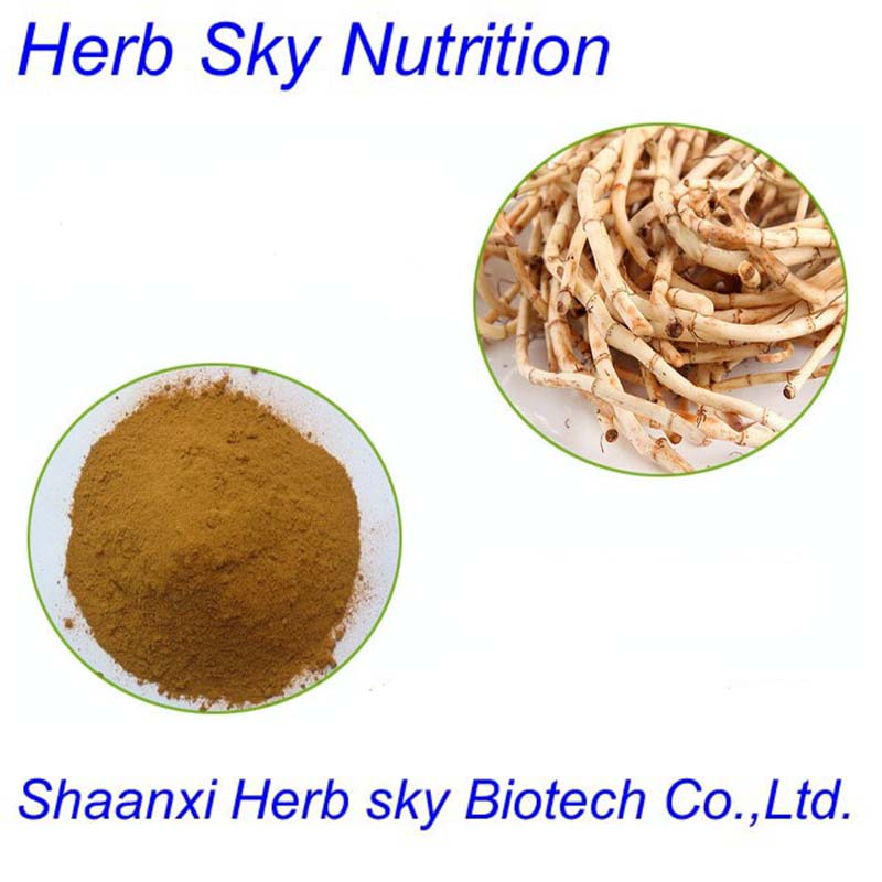 Good quality hot sale houttuynia cordata thunb extract 600g/lot