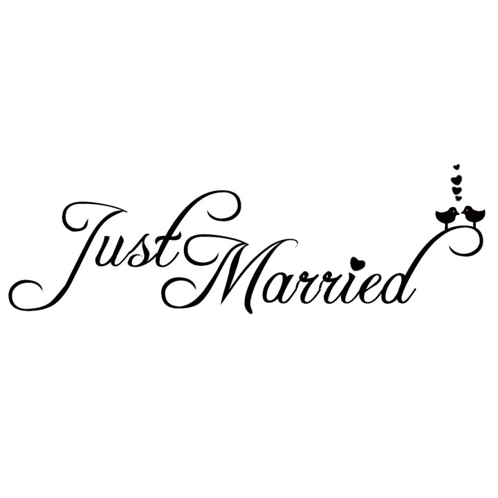 Buy Just Married Kiss Birds Car Animal Sticker Manufacturing Christmas Hot Design(China (Mainland))