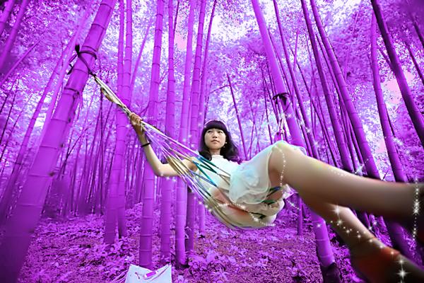 how to grow purple bamboo seeds