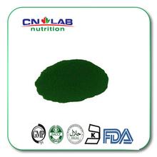 100% natural Spirulina Extract Powder/Spirulina Powder/Bulk Spirulina Algae Powder(China (Mainland))