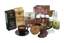 Organo Gold Gourmet Hot Chocolate 15 Sachets