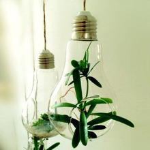 Glass Bulb Lamp Shape Flower Water Plant Hanging Vase Container
