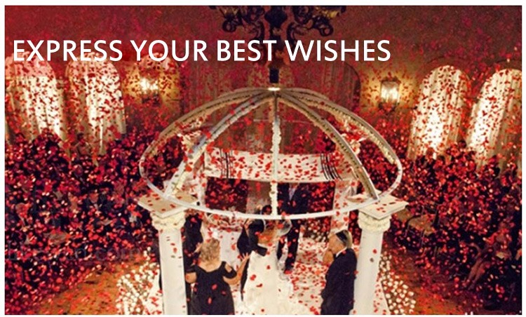 1000 Pcs Silk Rose Flower Petals Leaves for Wedding Decorations Party Festival Table Confetti Decor Artificial Flowers 16 Colors