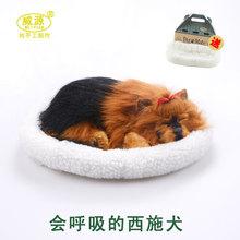 Famosa Shih Tzu mimados petz mimados compañero mascota respiración juguete lindo mascota dormir emulational juguete mini vívida
