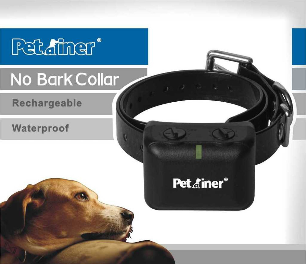 Where Can I Buy A Dog Shock Collar