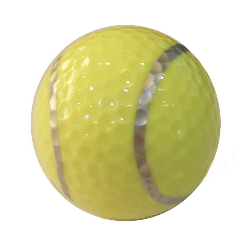 Free Shipping High Quality 2 Piece Sports Golf Balll Gift Golf Ball Tennis Ball(China (Mainland))