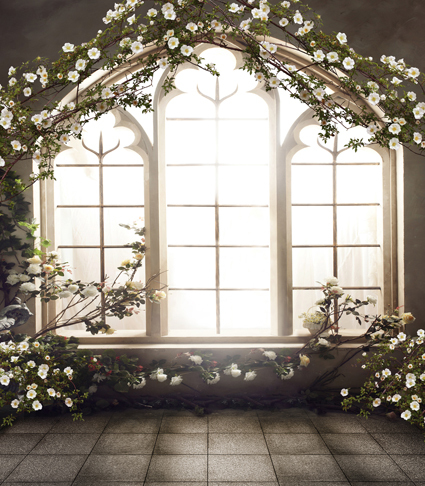 French Windows Indoor 5x7ft Backdrops Wedding Photo Studio Decor Backgrounds Computer Painted Vinyl Photography Backdrop(China (Mainland))
