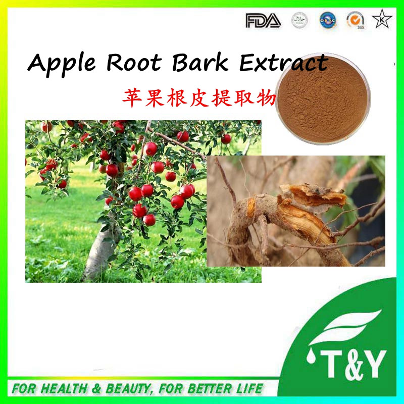 pure natural health product Apple Root Bark Extract powder 700g/lot<br><br>Aliexpress