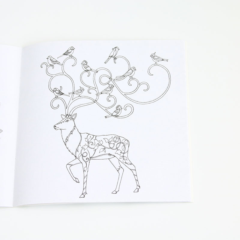 An English Version Of The Animal Kingdom Wallpapers Adult Children Coloring Books 24 Pages Per Book