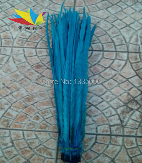 "Free shipping for 50 to 55 cm - ""pheasant feather bleaching and ringneck 50 PCS color Sky blue feather chicken tail(China (Mainland))"