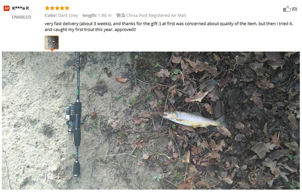 fishing rod  (3)