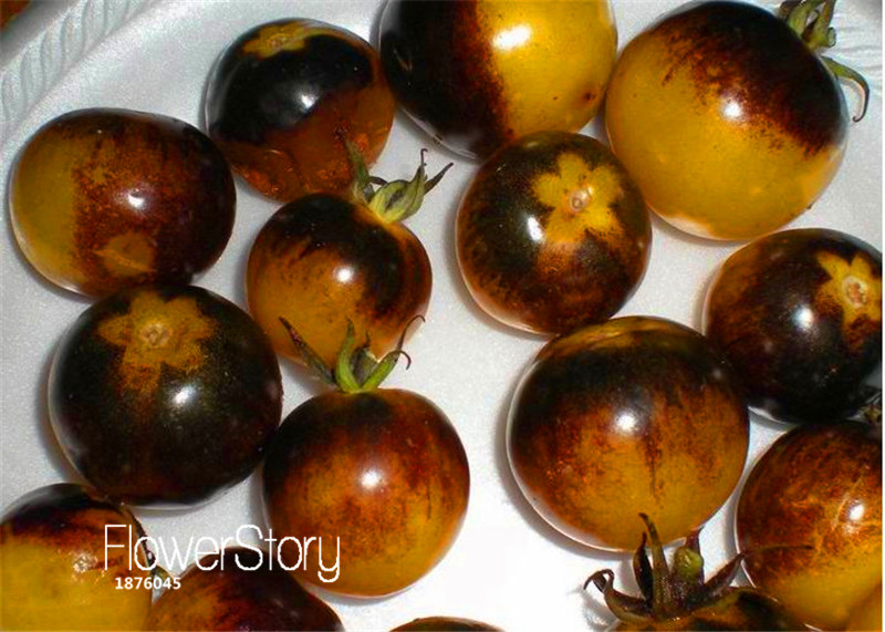 Hot Sale!Vegetable seeds,VERY RARE BUMBLE BEE HEIRLOOM TOMATO! LOW ACID 50 SEEDS! Mini fruit vegetable garden,#WR0MIW(China (Mainland))