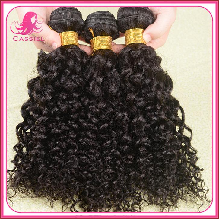 "brazillian virgin hair water wave 4pcs/lot brazilian curly virgin hair human hair weave 8""-30""MINK brazilian hair weave bundles(China (Mainland))"
