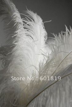 wholesale 22-24inch snow white male ostrich  wing feather plume usefor wedding centerpiece decoration