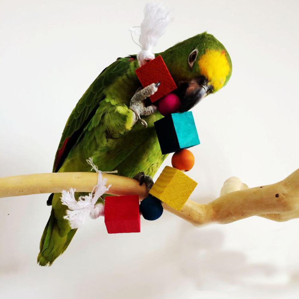 Discount Bird Toys : Popular good pet birds buy cheap lots from