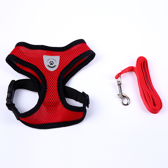Lovely Small Dog Harness