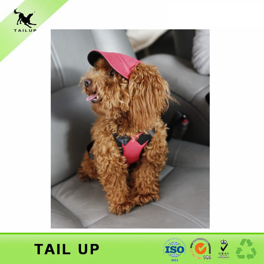 pet sport hat new 2014 pet dog baseball cap(China (Mainland))