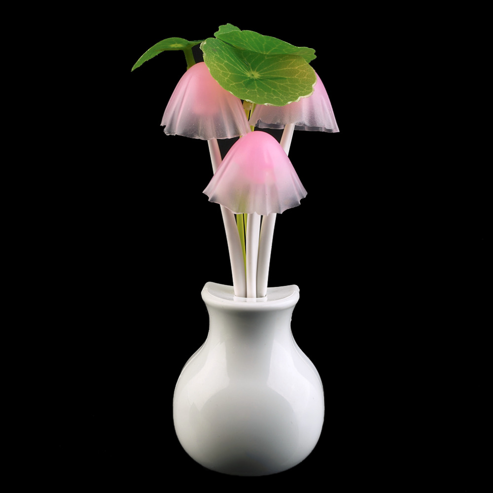 Vergelijk prijzen op Lotus Light - Online winkelen / kopen Lage ...
