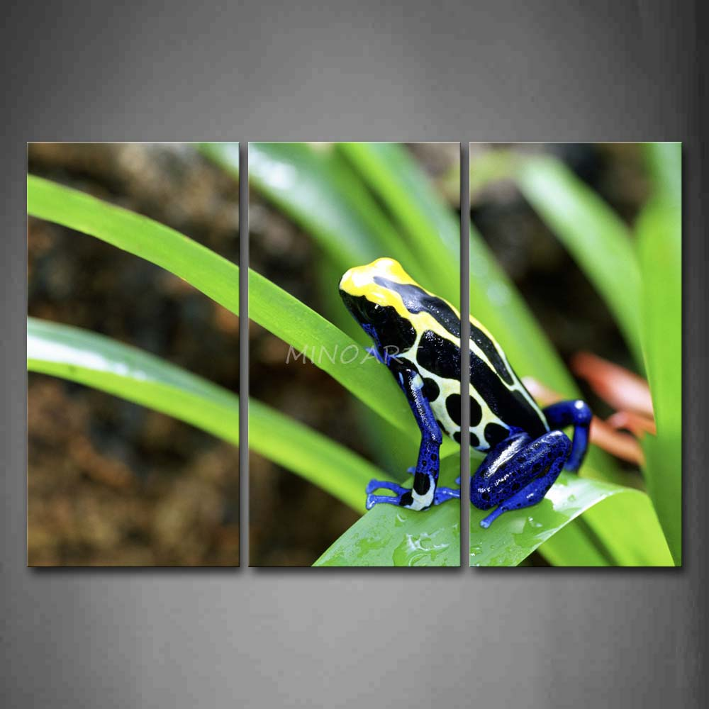 3 Piece Wall Art Painting Blue Poison Dart Frog Stay On Leaf Picture Print On Canvas Animal 4 The Picture(China (Mainland))