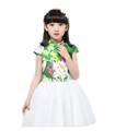 Chines Style Girl Kids Dress Embroidery Floral Cute Girls White Mesh Dress for Children 4