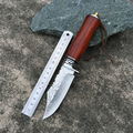 High hardness VG10 Damascus knife self defense wild jungle to straight knife not folding knife collection
