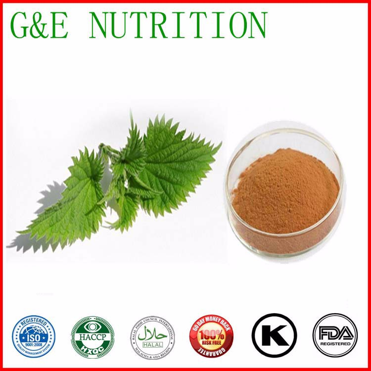 Nettle Plant Extract 600g<br><br>Aliexpress