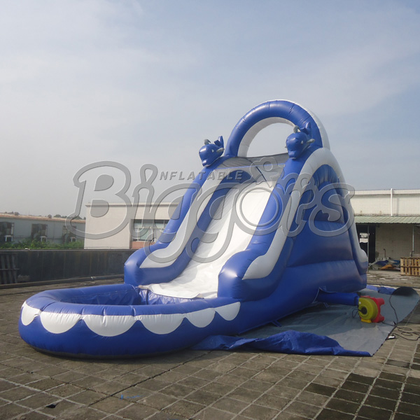 Inflatable Slide Commercial: Popular Inflatable Water Slides For Sale-Buy Cheap