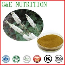 500g GMP Supplier Black cohosh/Actaea racemosa/ Cimicifuga Racemosa Extract with free shipping(China (Mainland))