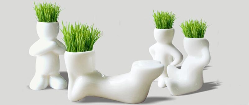 New 4 Shape Novel Bonsai Grass Doll Hair White Lazy Man Plant Garden DIY Mini
