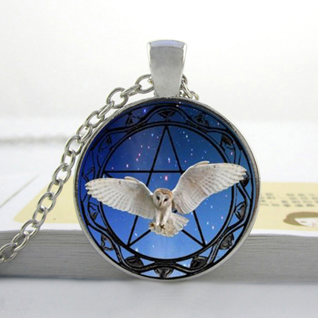 Owl Necklace Owl and Pentagram Star Background Photo Glass Dome Pendant Necklace Star Silver Owl Necklace(China (Mainland))