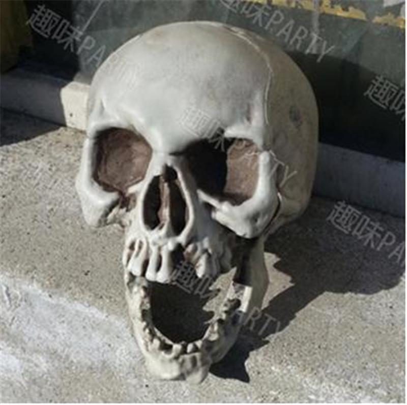 Menselijk schedelbeenderen promotie winkel voor promoties menselijk schedelbeenderen op for Volwassen kamer schilderij model