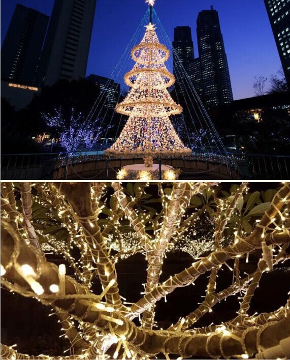 YG 100m600Leds 220V LED String Light For Wedding Party Holiday Chirstmas  Decoration Outdoor Waterproof