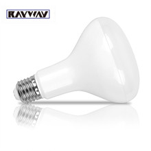 RAYWAY Dimmable E27 LED Bulb 12W BR30 Flood Light Replacement Incandescent Smooth Cool White Warm AC85-265V - ShenZhen HC Lighting Technology Co., Ltd store