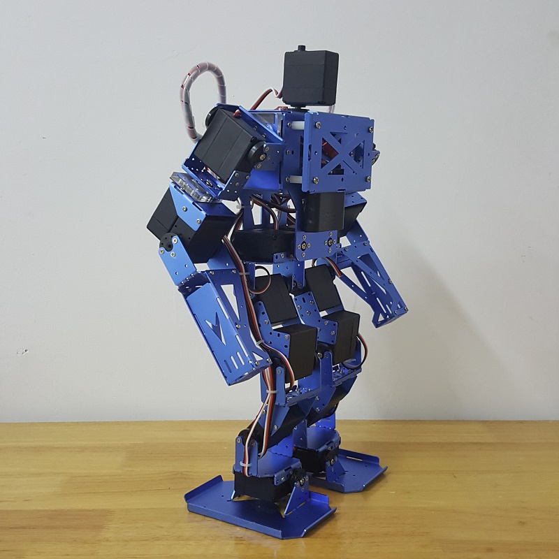 Robot humanoide compra lotes baratos de