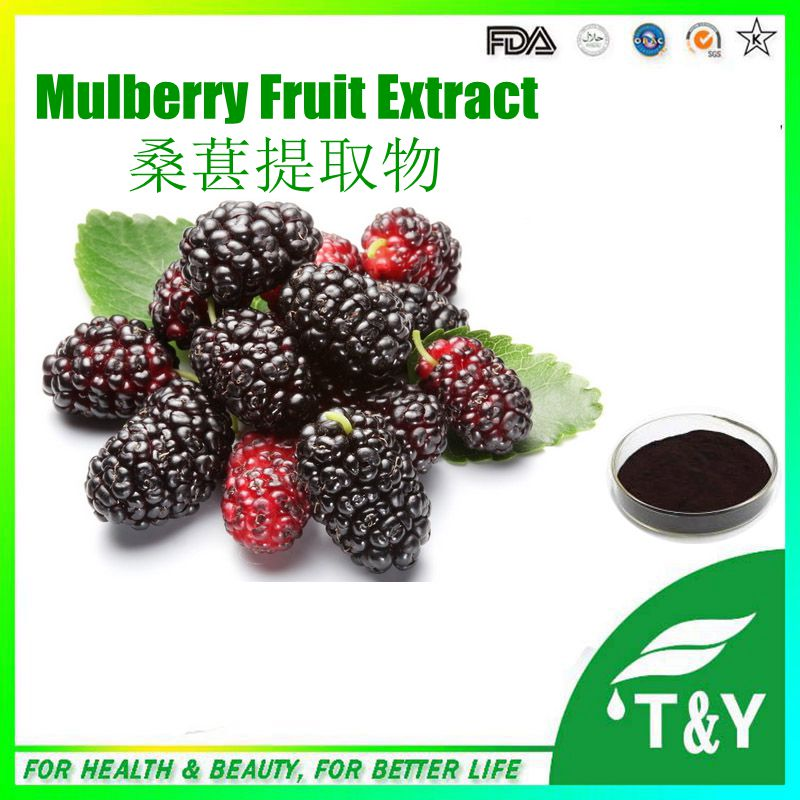 GMP certificated Hot sale High quality Mulberry Fruit Extract 300g/lot<br><br>Aliexpress